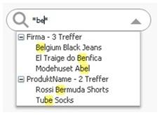 Screenshot einer Suchbox für mehrere Felder in QlikView 9